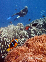 Hap's Reef, Guam... This photo was taken using available ... by Bill Stewart 
